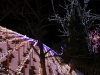 鳥取砂丘イリュージョン2012