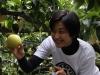 梨園にお越しいただきました。