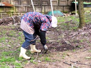 2月下旬の梨狩り園 1