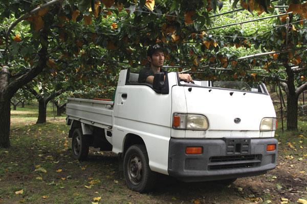 梨狩り園専用オープンカー