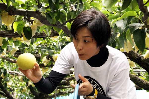 どおやら食べたい梨が決まったようです