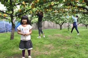 二十世紀梨と子供達1