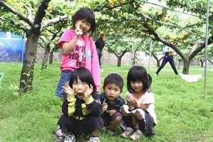 二十世紀梨と子供達3
