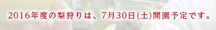 2016年度の梨狩りは7月30日(土)より開園予定です。