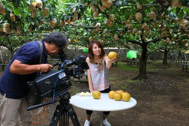 新甘泉テレビ取材2